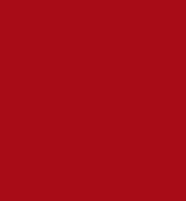 salems-logo